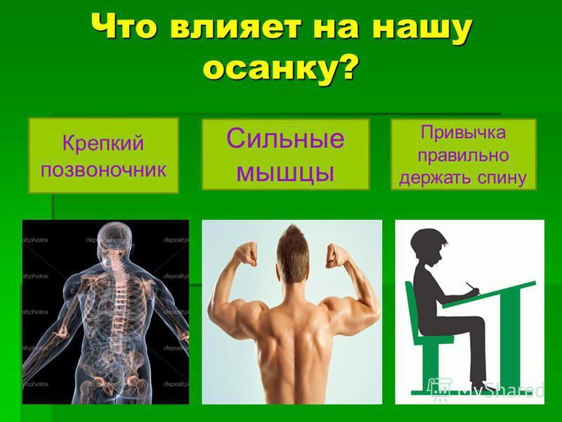 Что влияет на нашу осанку? Крепкий позвоночник Сильные мышцы Привычка правильно держать спину