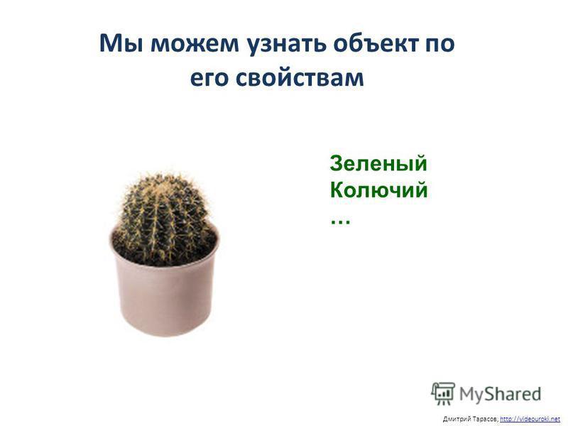 Мы можем узнать объект по его свойствам Дмитрий Тарасов, http://videouroki.nethttp://videouroki.net Зеленый Колючий …