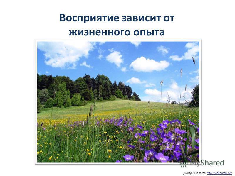 Восприятие зависит от жизненного опыта Дмитрий Тарасов, http://videouroki.nethttp://videouroki.net