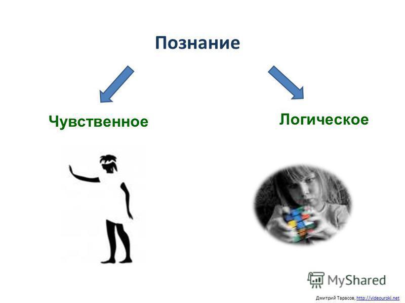 Познание Дмитрий Тарасов, http://videouroki.nethttp://videouroki.net Чувственное Логическое