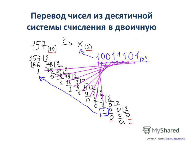 Перевод чисел из десятичной системы счисления в двоичную Дмитрий Тарасов, http://videouroki.nethttp://videouroki.net