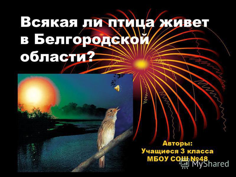Всякая ли птица живет в Белгородской области? Авторы: Учащиеся 3 класса МБОУ СОШ 48
