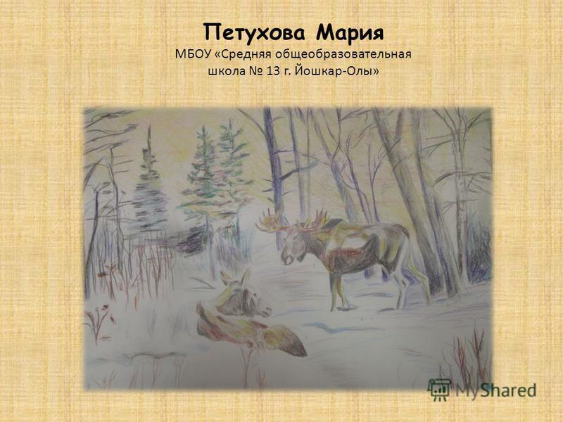 Петухова Мария МБОУ «Средняя общеобразовательная школа 13 г. Йошкар-Олы»