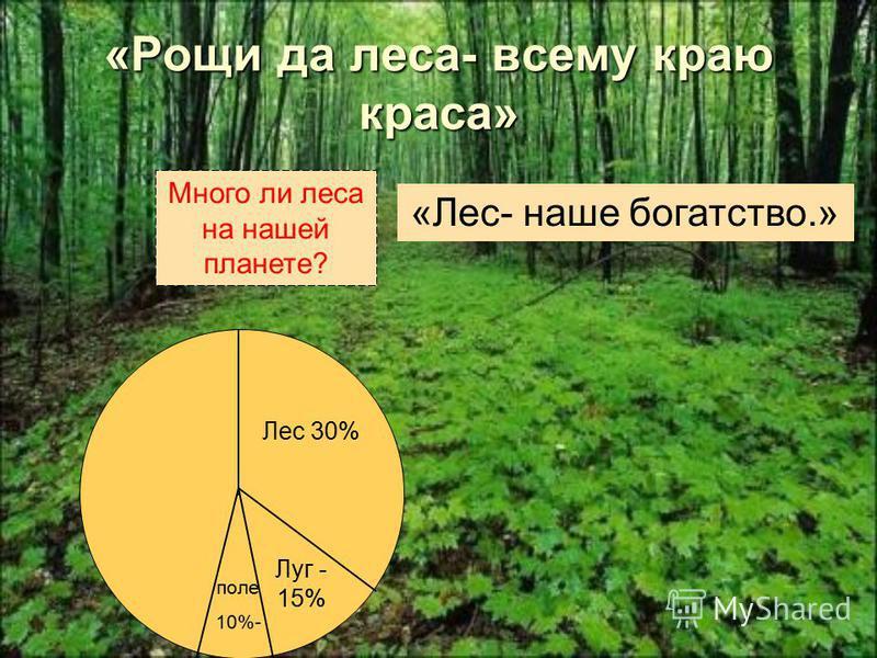 «Околдован невидимкой дремлет лес под сказку сна.»