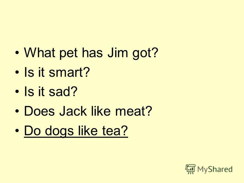 What pet has Jim got? Is it smart? Is it sad? Does Jack like meat? Do dogs like tea?