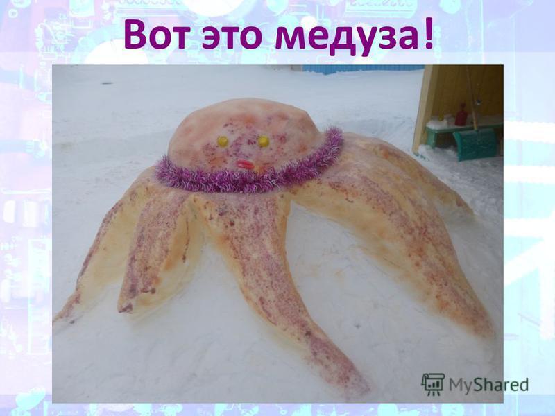 Вот это медуза!