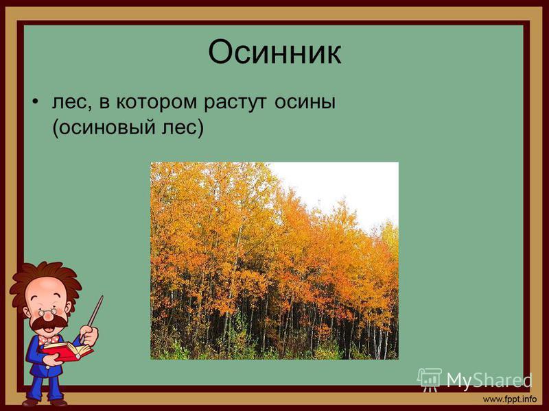 Осинник лес, в котором растут осины (осиновый лес)
