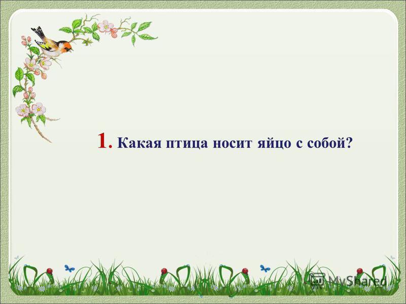 1. Какая птица носит яйцо с собой?