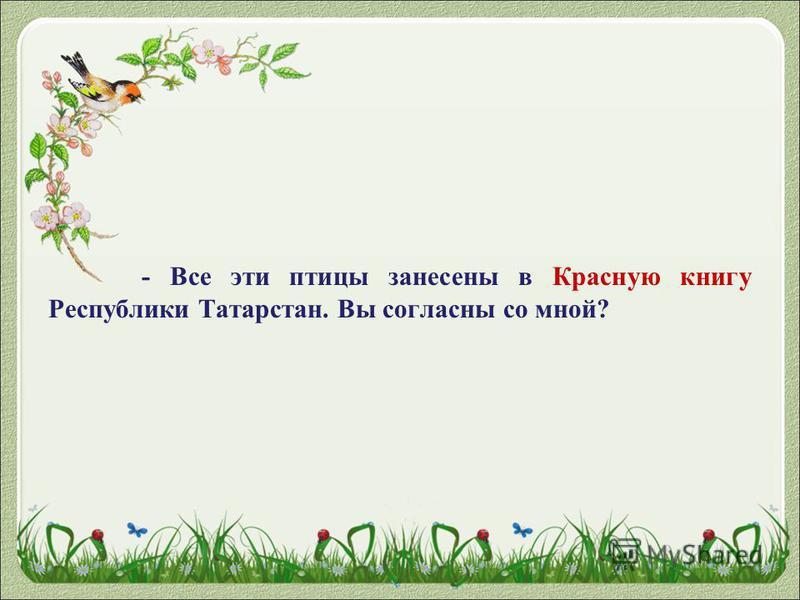 - Все эти птицы занесены в Красную книгу Республики Татарстан. Вы согласны со мной?