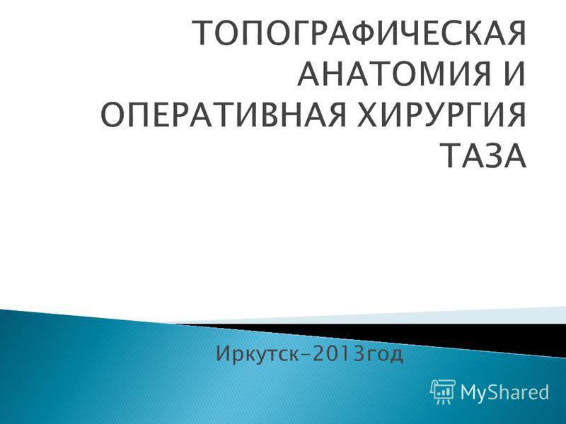 Иркутск-2013 год
