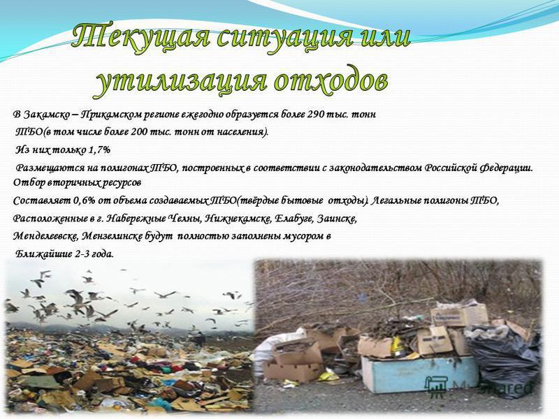 В Закамско – Прикамском регионе ежегодно образуется более 290 тыс. тонн ТБО(в том числе более 200 тыс. тонн от населения). Из них только 1,7% Размещаются на полигонах ТБО, построенных в соответствии с законодательством Российской Федерации. Отбор вто