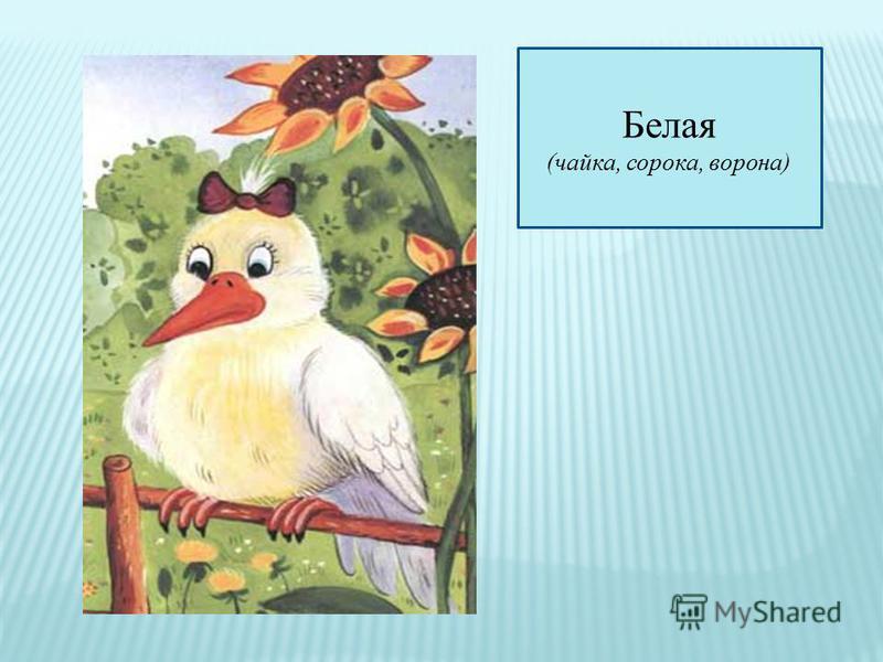 Белая (чайка, сорока, ворона)