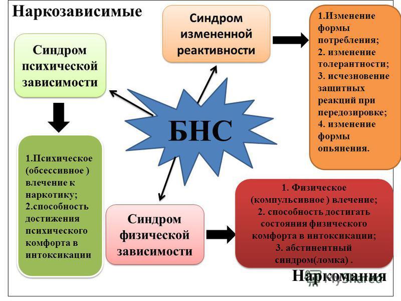 Наркозависимые Наркомания БНС Синдром измененной реактивности 1. Изменение формы потребления; 2. изменение толерантности; 3. исчезновение защитных реакций при передозировке; 4. изменение формы опьянения. Синдром психической зависимости 1. Психическое