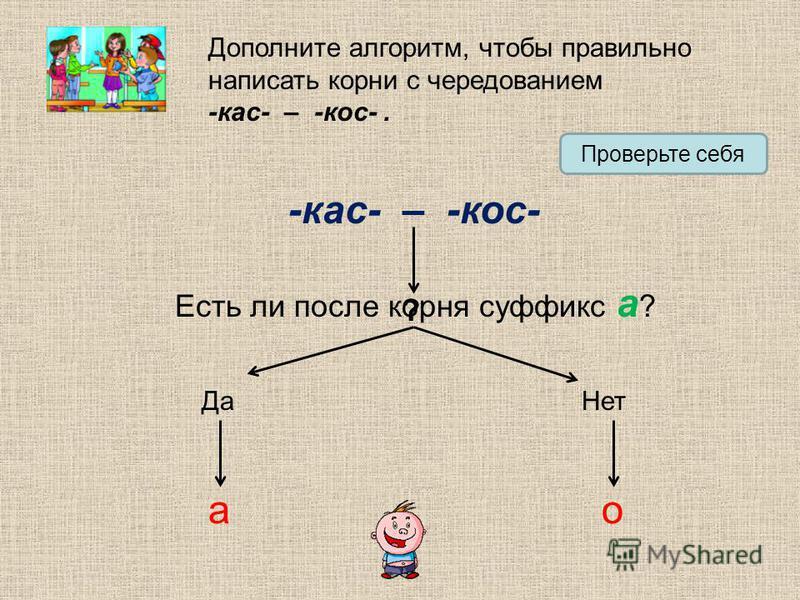 Дополните алгоритм, чтобы правильно написать корни с чередованием -кос- – -кос-. Проверьте себя -кос- – -кос- Есть ли после корня суффикс а ? Да Нет ао ?