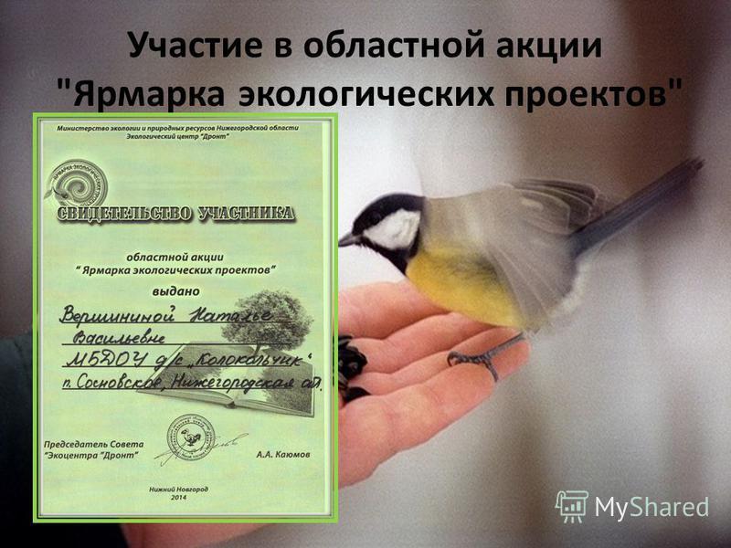 Участие в областной акции Ярмарка экологических проектов