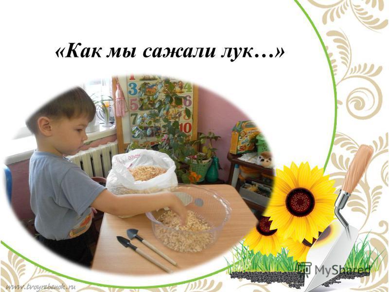 «Как мы сажали лук…»