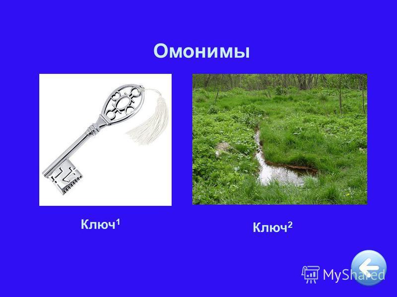Омонимы Ключ 1 Ключ 2