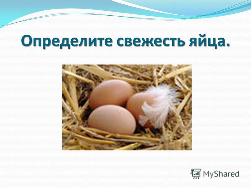 Определите свежесть яйца.