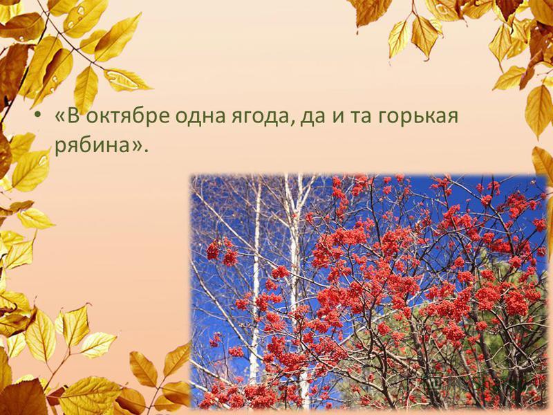 «В октябре одна ягода, да и та горькая рябина».