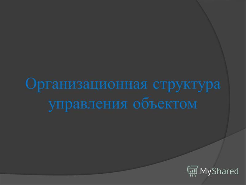 Организационная структура управления объектом