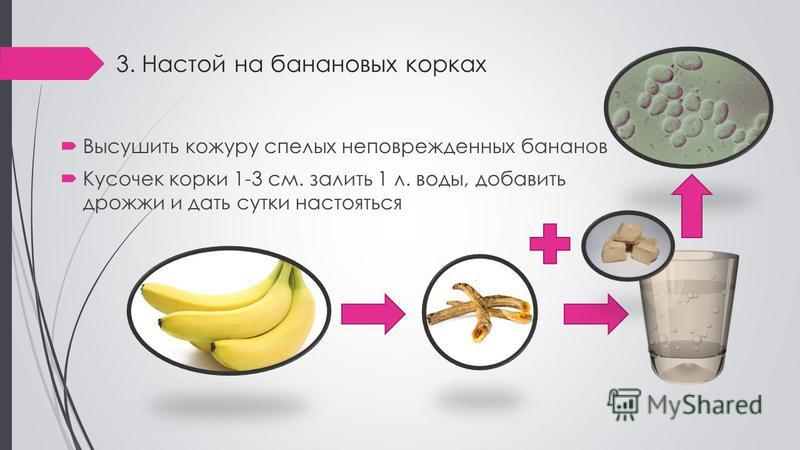 3. Настой на банановых корках Высушить кожуру спелых неповрежденных бананов Кусочек корки 1-3 см. залить 1 л. воды, добавить дрожжи и дать сутки настояться