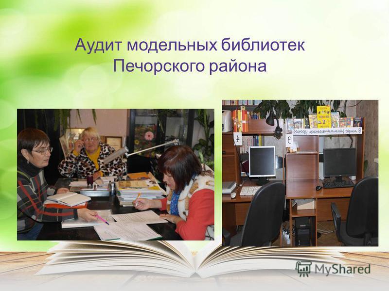 Аудит модельных библиотек Печорского района