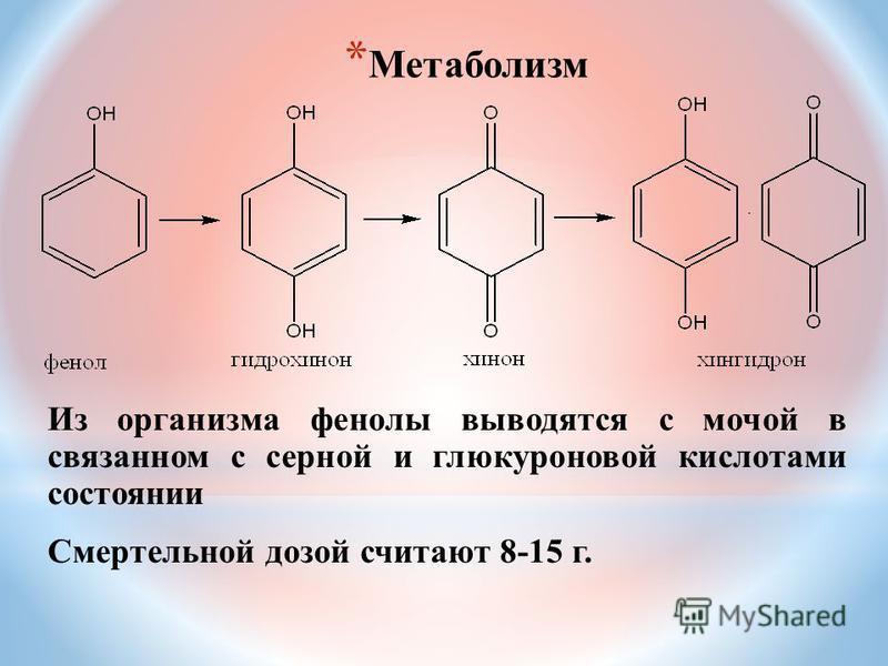 * Метаболизм Из организма фенолы выводятся с мочой в связанном с серной и глюкуроновой кислотами состоянии Смертельной дозой считают 8-15 г.
