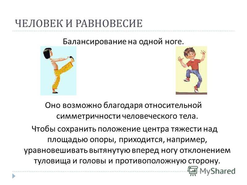 ЧЕЛОВЕК И РАВНОВЕСИЕ Балансирование на одной ноге. Оно возможно благодаря относительной симметричности человеческого тела. Чтобы сохранить положение центра тяжести над площадью опоры, приходится, например, уравновешивать вытянутую вперед ногу отклоне