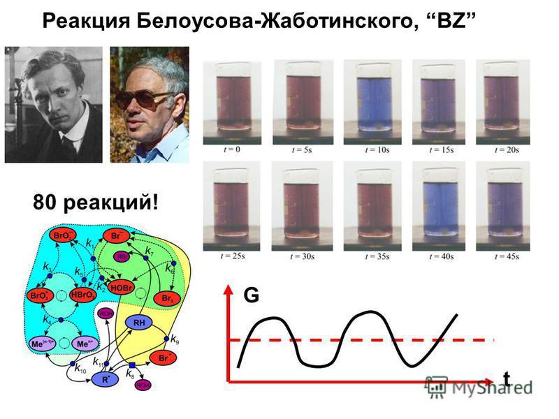 Реакция Белоусова-Жаботинского, BZ G t 80 реакций!