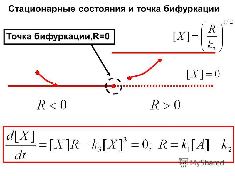 Стационарные состояния и точка бифуркации Точка бифуркации,R=0