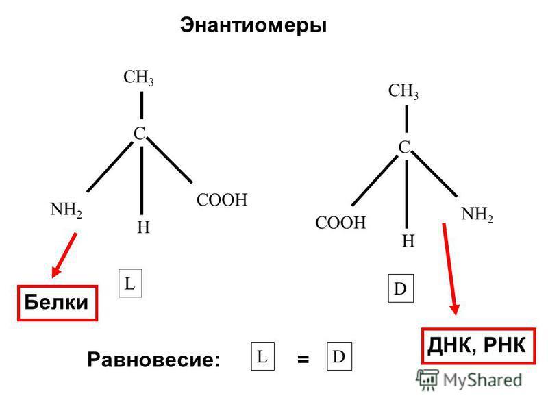 CH 3 C NH 2 H COOH CH 3 C COOH H NH 2 L D Энантиомеры Равновесие: LD = ДНК, РНК Белки