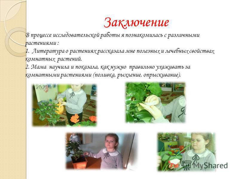 Заключение В процессе исследовательской работы я познакомилась с различными растениями : 1. Литература о растениях рассказала мне полезны х и лечебны х свойства х комнатных растений. 2. Мама научила и показала, как нужно правильно ухаживать за комнат