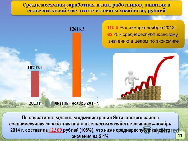 115,5 % к январю-ноябрю 2013 г., 62 % к средне республиканскому значению в целом по экономике По оперативным данным администрации Янтиковского района среднемесячная заработная плата в сельском хозяйстве за январь-ноябрь 2014 г. составила 12309 рублей