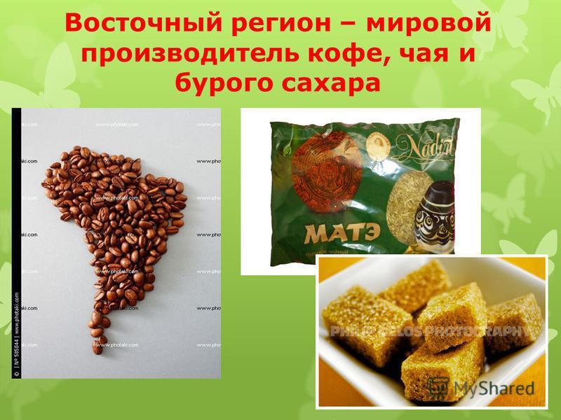Сельское хозяйство Андийский район – мировой производитель сахарного тростника, банана, хлопка, рыбы.