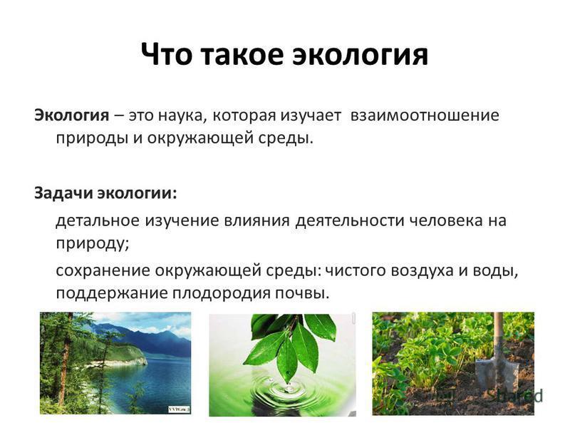 Что такое экология Экология – это наука, которая изучает взаимоотношение природы и окружающей среды. Задачи экологии: детальное изучение влияния деятельности человека на природу; сохранение окружающей среды: чистого воздуха и воды, поддержание плодор