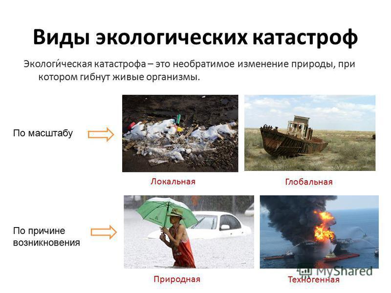 Сообщение экологическая катастрофа 3 класс