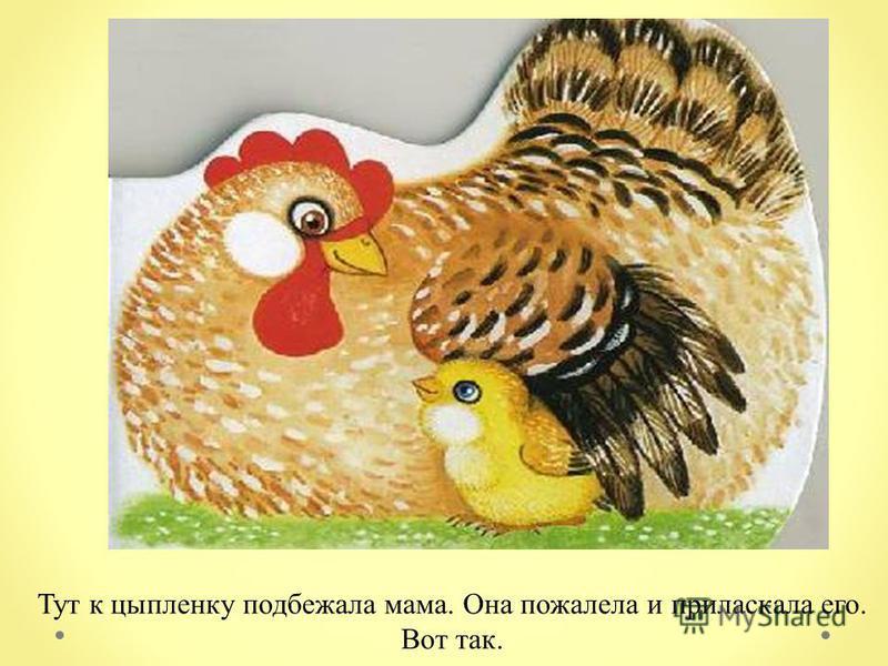 Тут к цыпленку подбежала мама. Она пожалела и приласкала его. Вот так.