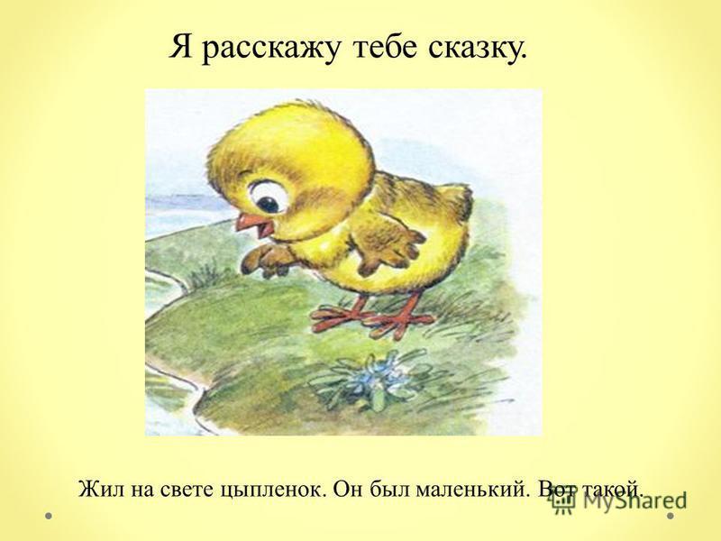 Жил на свете цыпленок. Он был маленький. Вот такой. Я расскажу тебе сказку.