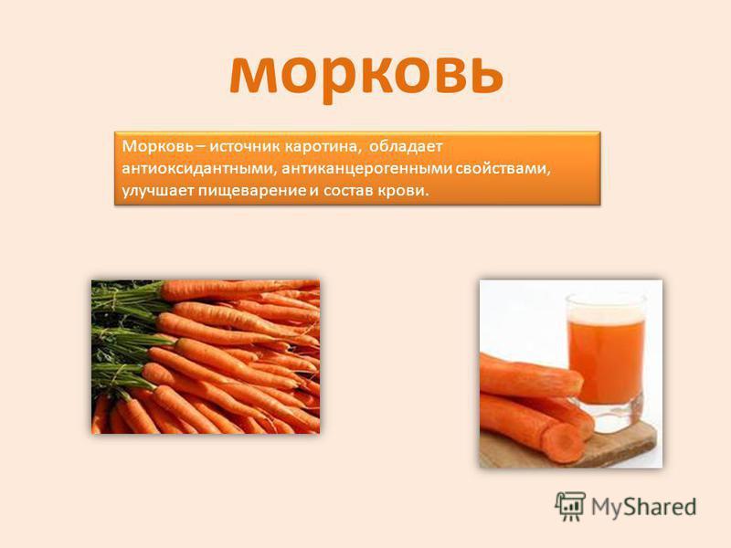 морковь Морковь – источник каротина, обладает антиоксидантными, антиканцерогенными свойствами, улучшает пищеварение и состав крови.