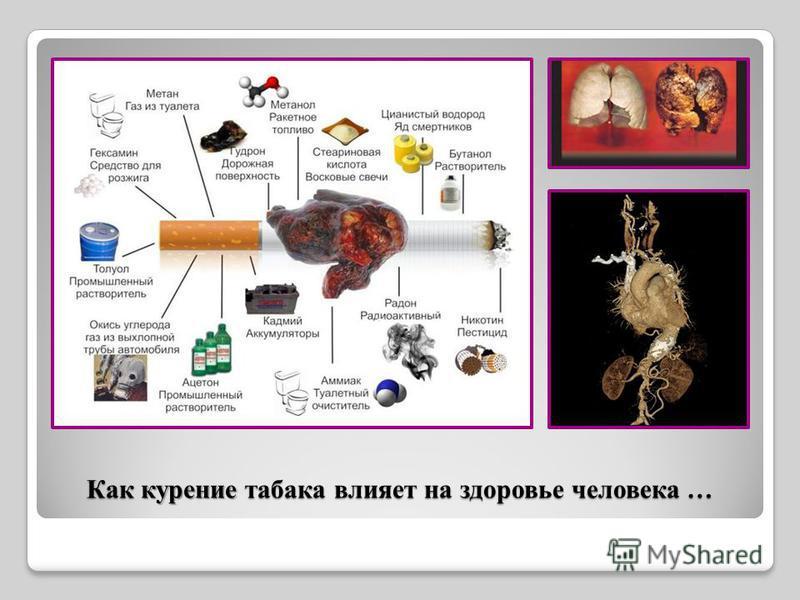 Как курение табака влияет на здоровье человека …