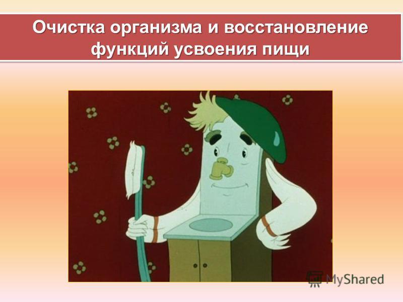 Очистка организма и восстановление функций усвоения пищи