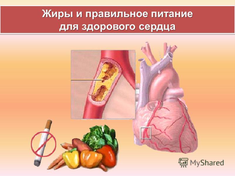 Жиры и правильное питание для здорового сердца Жиры и правильное питание для здорового сердца