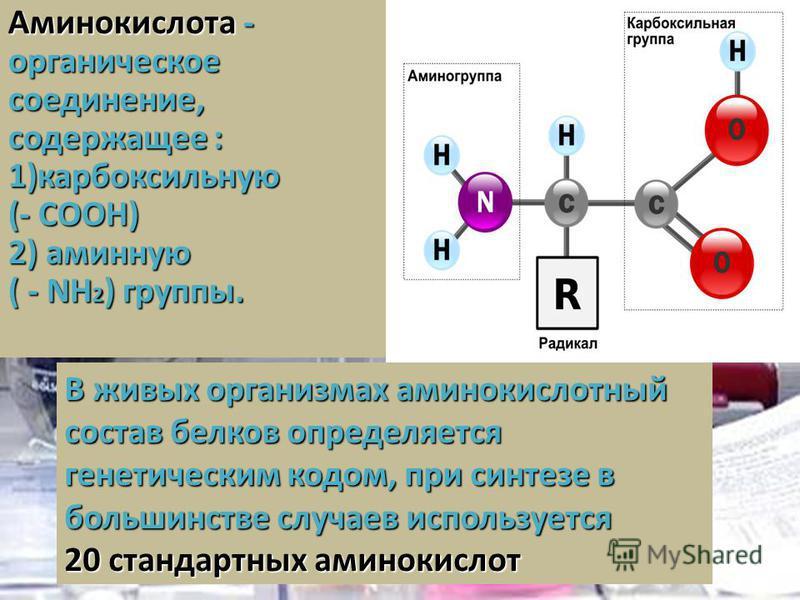 Аминокислота - органическое соединение, содержащее : 1)карбоксильную (- СOOH) 2) аминную ( - NH 2 ) группы. В живых организмах аминокислотнай состав белков определяется генетическим кодом, при синтезе в большинстве случаев используется 20 стандартнах