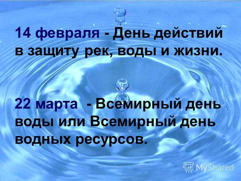14 февраля - День действий в защиту рек, воды и жизни. 22 марта - Всемирный день воды или Всемирный день водных ресурсов.