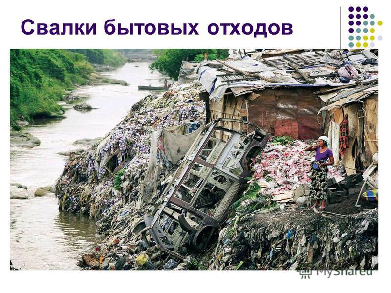 Свалки бытовых отходов
