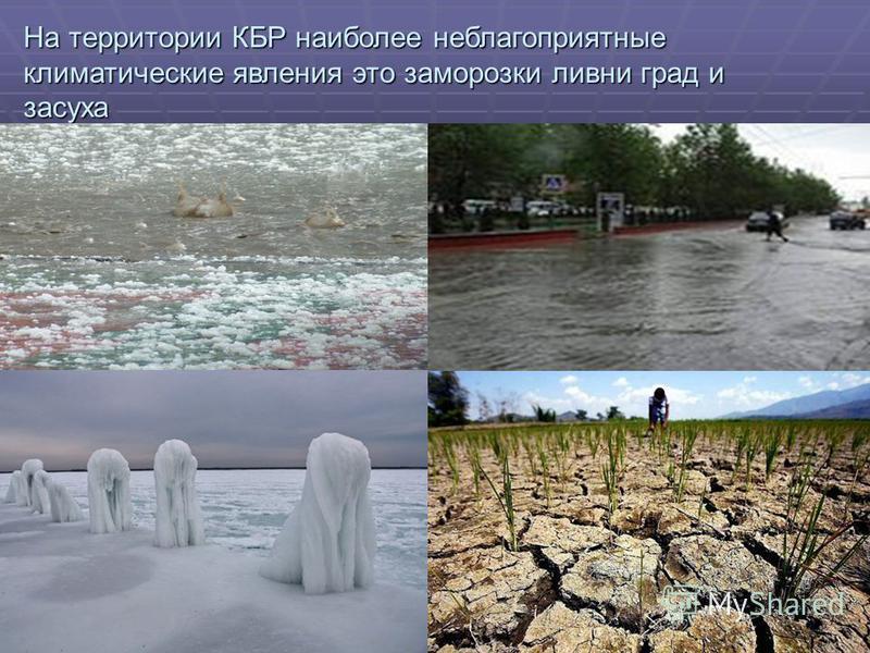 . На территории КБР наиболее неблагоприятные климатические явления это заморозки ливни град и засуха