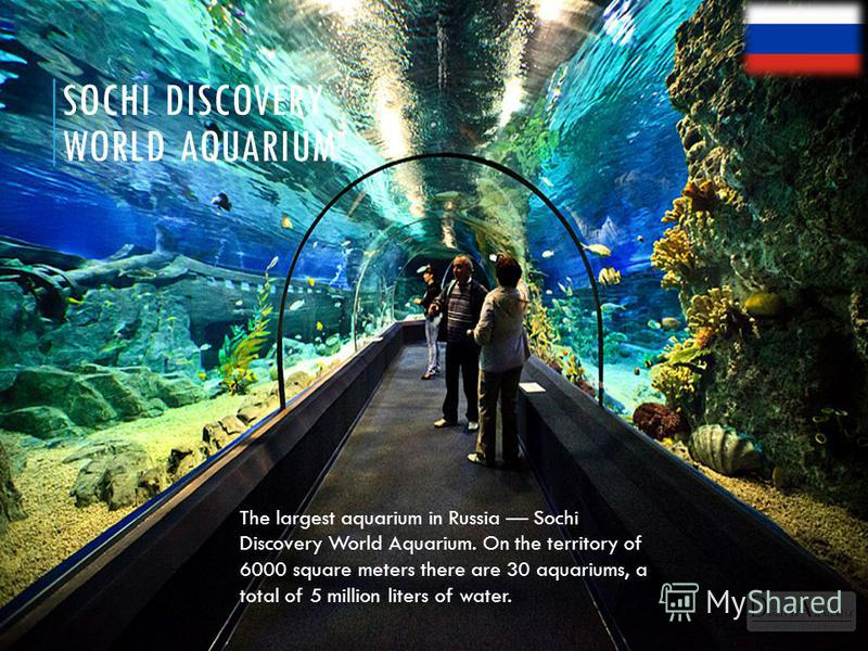 SOCHI DISCOVERY WORLD AQUARIUM The largest aquarium in Russia Sochi Discovery World Aquarium. On the territory of 6000 square meters there are 30 aquariums, a total of 5 million liters of water.