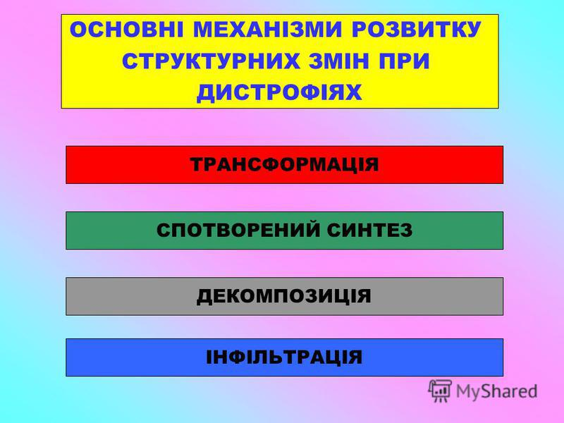ОСНОВНІ МЕХАНІЗМИ РОЗВИТКУ СТРУКТУРНИХ ЗМІН ПРИ ДИСТРОФІЯХ ДЕКОМПОЗИЦІЯ ІНФІЛЬТРАЦІЯ СПОТВОРЕНИЙ СИНТЕЗ ТРАНСФОРМАЦІЯ
