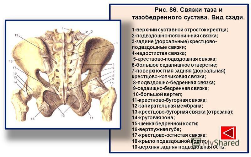 боли в крестцово-подвздошный суставе