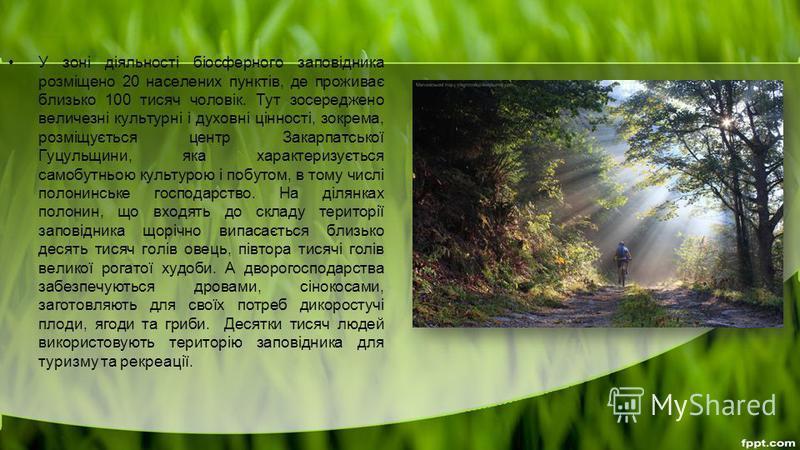 У зоні діяльності біосферного заповідника розміщено 20 населених пунктів, де проживає близько 100 тисяч чоловік. Тут зосереджено величезні культурні і духовні цінності, зокрема, розміщується центр Закарпатської Гуцульщини, яка характеризується самобу